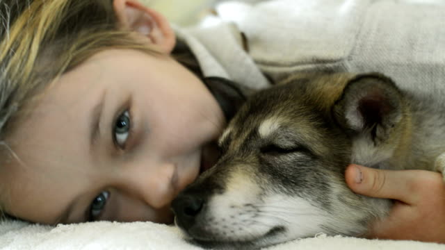 girl having fun dog whispering in his ear video