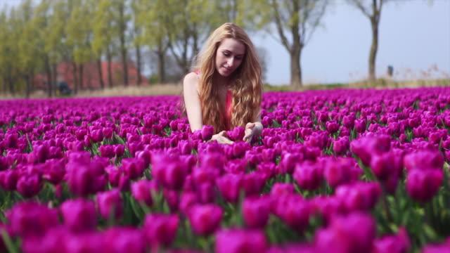 花束カラフルなチューリップの花を持ち、紫色のチューリップ畑に立っている女の子。 - キューケンホフ公園点の映像素材/bロール