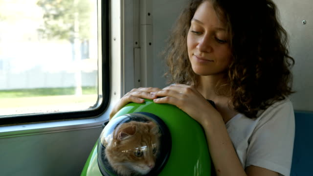 girl holds cat in backpack with porthole traveling by train - vídeo