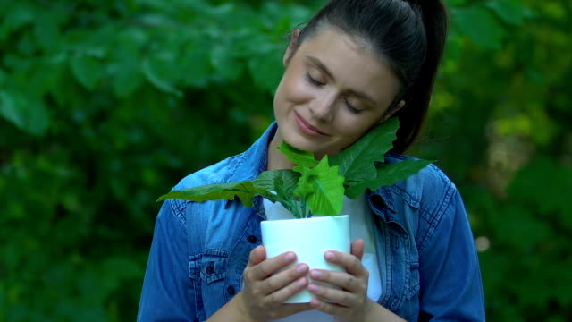 Girl hugging house plant against forest background, home air purification oxygen Girl hugging house plant against forest background, home air purification oxygen potted plant stock videos & royalty-free footage