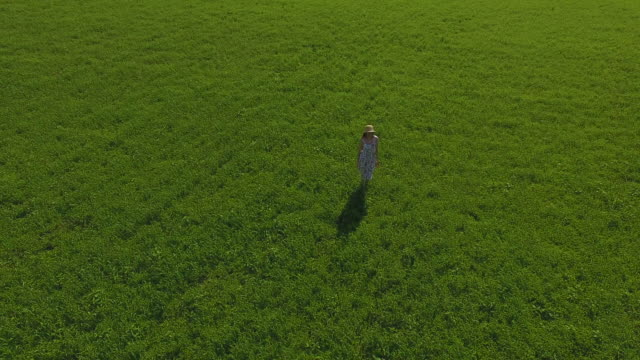 A girl in a dress and a hat walks through a green field of grass. Aerial shoot A girl in a dress and a hat walks on the grass in the field grass area stock videos & royalty-free footage
