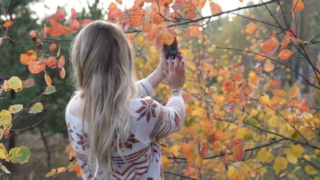 vídeos de stock, filmes e b-roll de a menina no parque do outono faz o selfie no smartphone - setembro amarelo