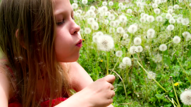 Girl in the Meadow of Dandelions video