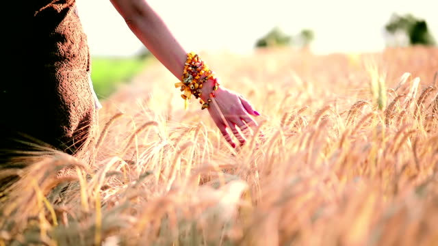 Girl in wheat video