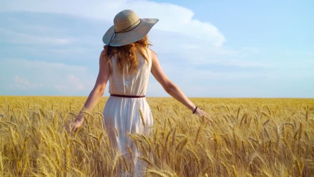Girl in white dress and big hat walking on wheat field video