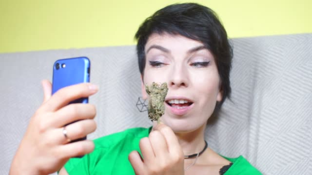 girl is photographed with a marijuana plant, posing girl is photographed on a smartphone with a marijuana plant in her hands, posing hashish stock videos & royalty-free footage