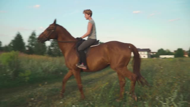 girl is riding a horse - briglia video stock e b–roll