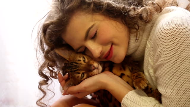 Girl kissing a Bengal cat. Young cute girl kissing a Bengal cat, close-up. Girl with curly hair. Girl in warm white sweater. Home comfort. Pet. indulgence stock videos & royalty-free footage