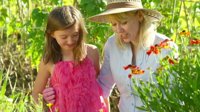 girl learns to garden from grandma - baby boomer stock videos and b-roll footage