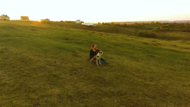 Girl petting American Staffordshire terrier on hill at sunset video