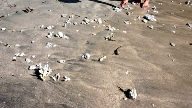 Girl picking up coral stones at Crytal Bay beach at Nusa Penida Island, Indonesia