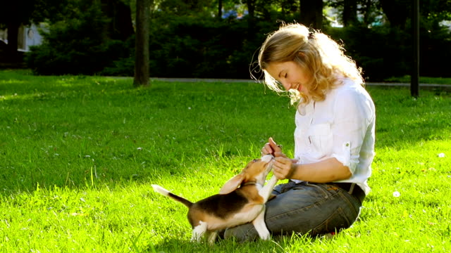 Girl playing with her beagle dog in  park. Slow motion video