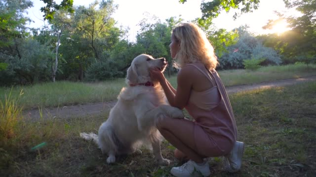 girl playing with labrador retriever dog in park - fedeltà video stock e b–roll