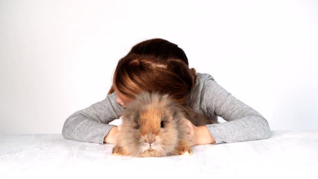 女の子の演劇およびウサギと抱擁 ビデオ