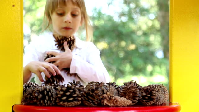 Girl plays with a fir-cones video