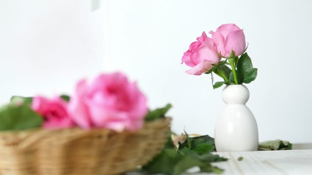 Girl putting pink roses in to white vase happily