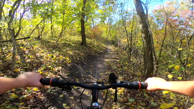 Girl rides bicycle through forest. Girl rides bike along path in forest