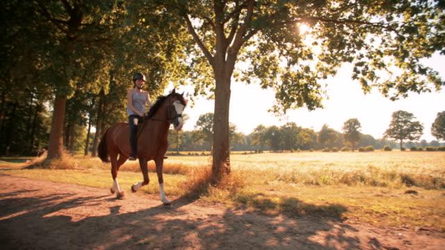 girl の乗馬で、美しい・ホース・パスのほか、フィールド - 動物に乗る点の映像素材/bロール