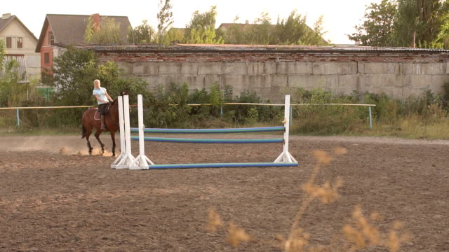 Girl riding a brown horse jumps over the barrier. video