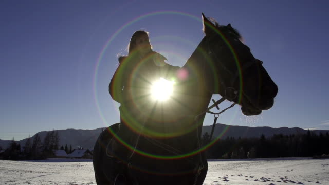 PORTRAIT: girl riding big black horse in winter SLOW MOTION: girl stroking her horse in nature cowgirl stock videos & royalty-free footage