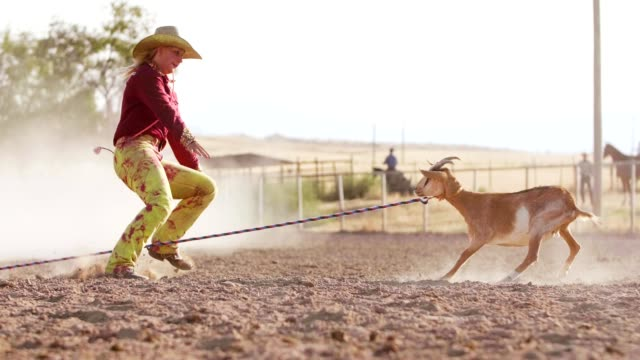 Girl Rodeo Goat Tying Young girl at rodeo event featuring Goat Tying. Utah, USA cowgirl stock videos & royalty-free footage