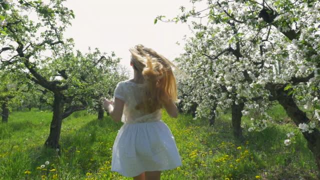 flicka som springer i en fruktträdgård - fruktträdgård bildbanksvideor och videomaterial från bakom kulisserna
