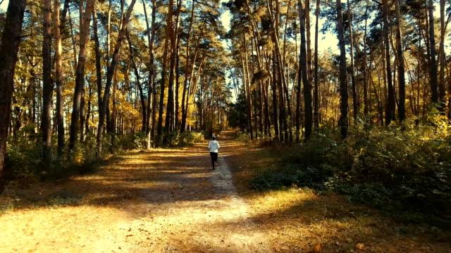 flicka kör i skogen solig morgon. idrott - tävlingsdistans bildbanksvideor och videomaterial från bakom kulisserna