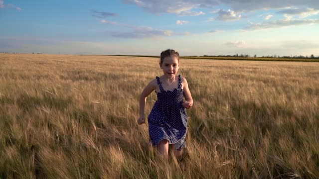 Girl Runs Across the Field with Wheat video
