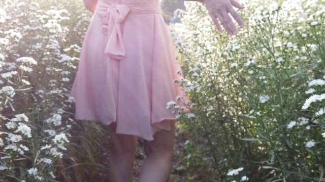 girl stroll in daisy flower garden - gardino video stock e b–roll