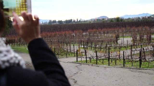 dziewczyna robi zdjęcie winiarni w ameryce południowej - ekoturystyka filmów i materiałów b-roll