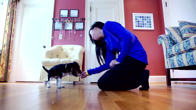 Girl Teaches Puppy to Sit video