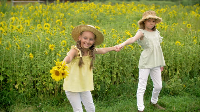 Girl teenager pulling girlfriend by hand on yellow sunflowers field. Cheerful and sad girlfriend walking on sunflower meadow in countryside.