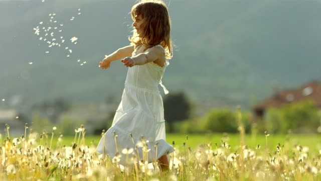 SUPER SLO-MO Girl Throwing Dandelion Seeds HD1080p: Super Slow Motion shot of a little girl throwing dandelion seeds while she twirling in the middle of the meadow. dress stock videos & royalty-free footage