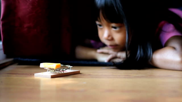 Girl Using A Mousetrap video