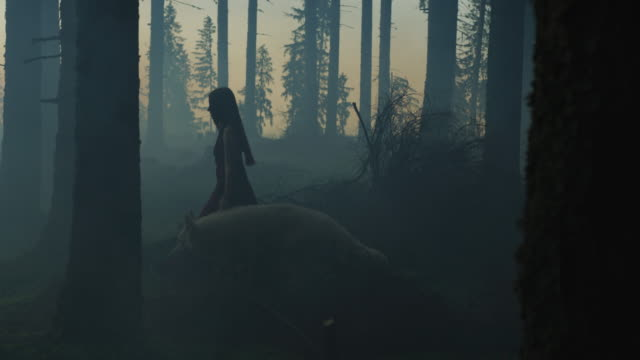 girl walking in the forest - mitologia video stock e b–roll