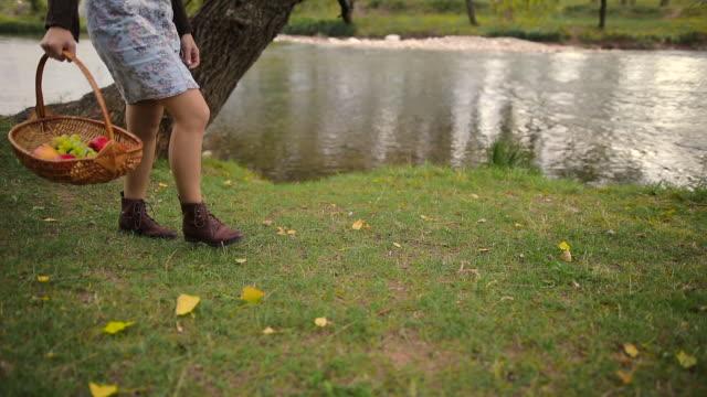 vídeos de stock e filmes b-roll de girl walking with fruit basket - saladeira