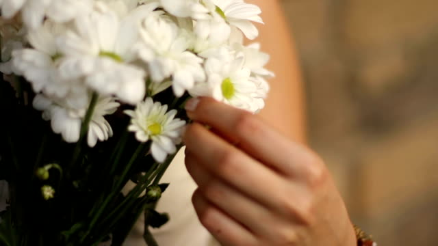 girl with a bouquet of flowers of chamomiles - bouquet video stock e b–roll