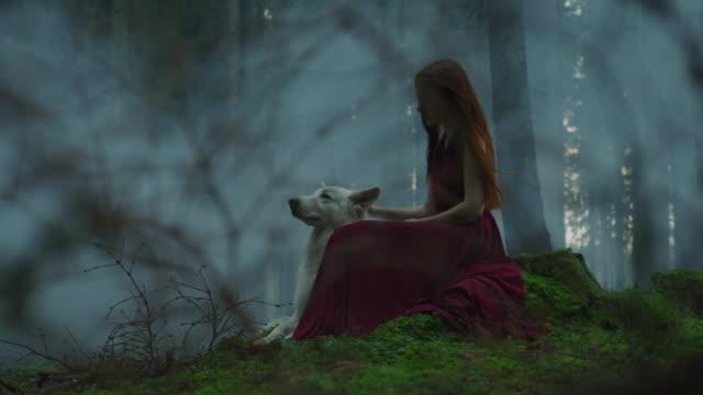 puslu bir ormanda bir köpek ile kız - fantastik stok videoları ve detay görüntü çekimi