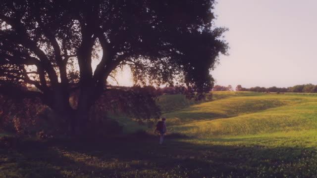 flicka med ryggsäck promenader i landet fält vid solnedgången - pilgrimsfärd bildbanksvideor och videomaterial från bakom kulisserna