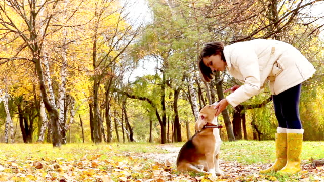 Girl with dog best friend in autumnal park video