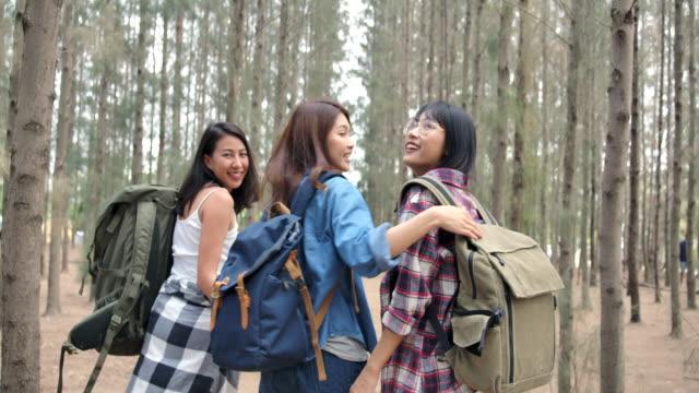 flickvänner pratar och campar i tallskogen - flickvän bildbanksvideor och videomaterial från bakom kulisserna