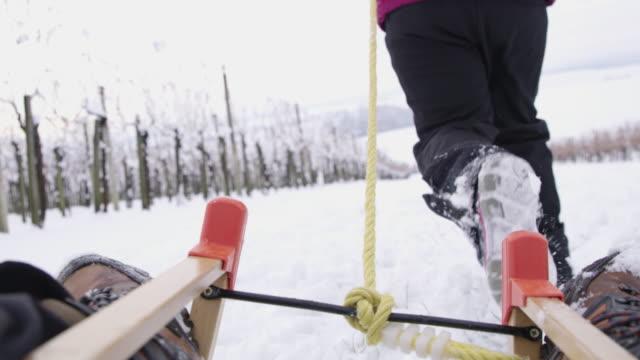 4k flickor och hund spelar, långsam pulkaåkning i snöiga vingård, rörelse - vintersport bildbanksvideor och videomaterial från bakom kulisserna