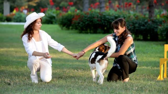 ragazze e i loro animali domestici - cane addestrato video stock e b–roll