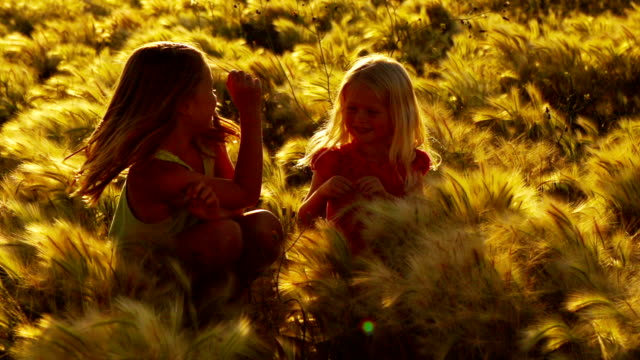 Girls in a Field of Wild Grass video