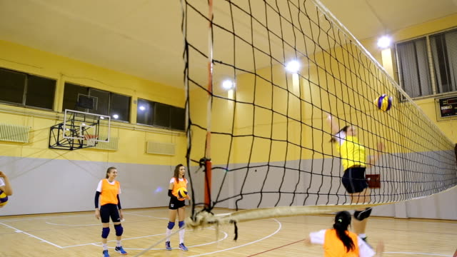 Girls on practice Women volleyball team training indoors. volleyball ball stock videos & royalty-free footage