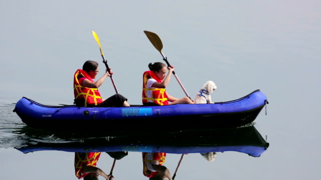 girls paddling kayak across a lake with pet dog - kanotsport bildbanksvideor och videomaterial från bakom kulisserna