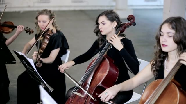 Girls play on violoncello and violin in orchestra video