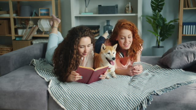 Girls reading book using smartphone lying on bed with dog in apartment