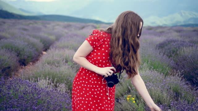 girls take photos and walk in the lavender field - brązowe włosy filmów i materiałów b-roll