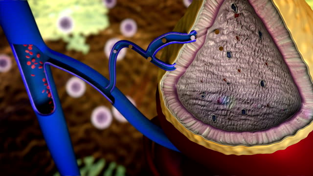 gland produces hormones - adrenalina video stock e b–roll